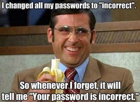 Your Password is Incorrect