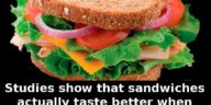 sandwich-smell