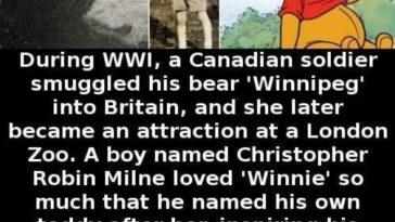 winnie pooh origins