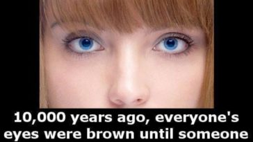 blue eye facts