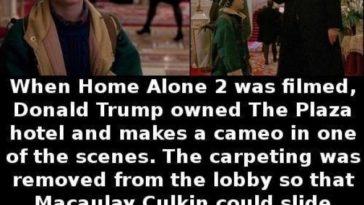 Trump alone 2