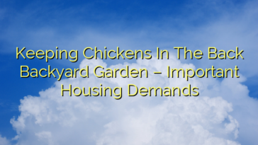 Keeping Chickens In The Back Backyard Garden – Important Housing Demands